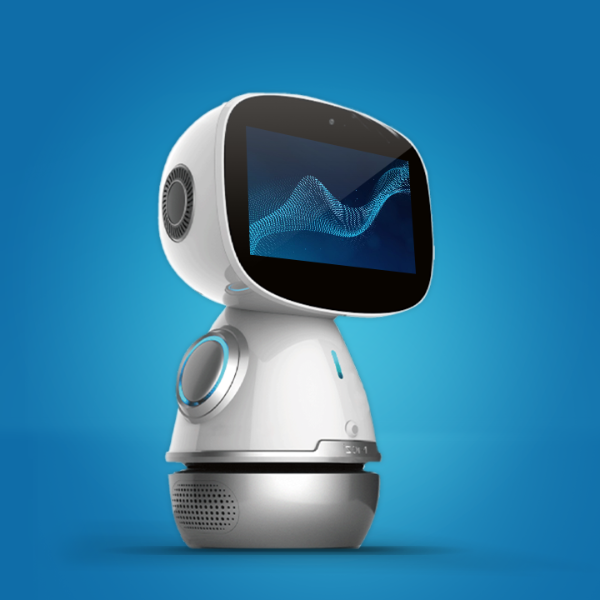 Educational companion robot